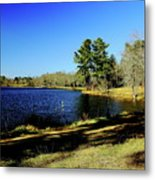 A Day To Ponder Metal Print