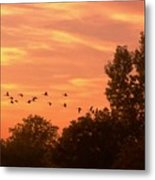 A Different Approach To Sunset Metal Print