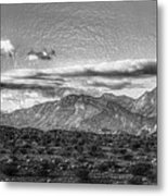 A Different Look Metal Print