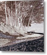A Different World #1. Groove Of Trees Metal Print