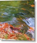 Flowing Water Fall Leaves Closeup Metal Print