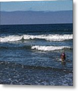 A Dog At The Beach Metal Print