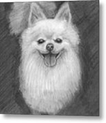 A Doggie 4 Xmas Metal Print