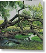 A Dramatic Change Of Perspective Metal Print