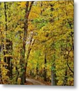 A Drive Through The Park Metal Print