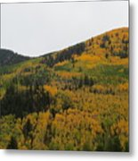 A Drive Throw The Forest In The Fall Metal Print