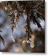 A Drop Of Ice Metal Print
