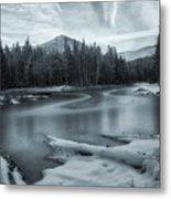 A Dry Winter 2 Metal Print