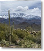 A Dusting Of Snow In The Sonoran Desert  Metal Print