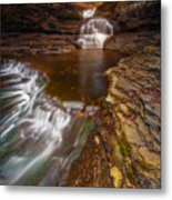 A Dying Breed Metal Print