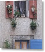 A Face In The Window Metal Print