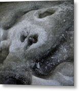 A Face Of Winter Metal Print