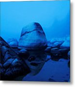 A Face Only A Mother Could Love Metal Print