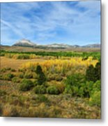 A Fall Day In The Sierras Metal Print