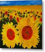 A Field Of Sunflowers Metal Print