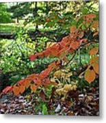 A Flame In The Forest Metal Print