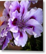 A Floral For Jalapeno Metal Print