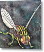 A Fly Metal Print