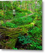 A Forest Stroll Metal Print