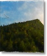 A Forested Dune... Metal Print