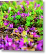 A Forever Moment Metal Print
