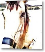 A Friend Loves At All Times Metal Print
