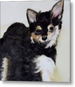 A Friend With A Smile  Metal Print