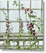 A Garden Greenhouse  Metal Print