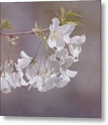 A Gentle Touch Of Spring Metal Print