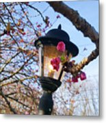A Glance Of Spring Metal Print