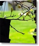 A Glimpse Of Spring Metal Print