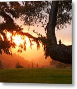 A Glimpse Of Summer Metal Print