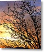 A Glorious Sky Metal Print