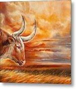 A Great Texas Longhorn Steer Inspired The Bevo Song Metal Print