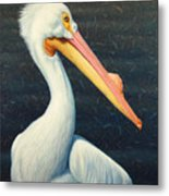 A Great White American Pelican Metal Print by James W Johnson