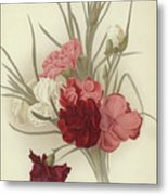 A Group Of Clove Carnations Metal Print
