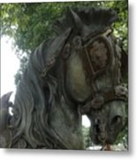 A Handsome Steed Metal Print