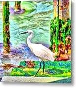 a heron is walking on a stair about the Grand Canal Metal Print
