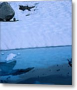 A Hiker Explores A Lake Near The Nellie Metal Print
