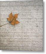 A Hint Of Autumn Metal Print