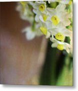 A Hint Of Spring Metal Print by Rebecca Cozart