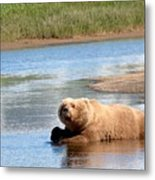 A Hot Day In The Hallo Bay Katmai National Park Preserve Metal Print