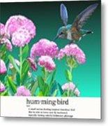 A Hummingbird Visits Metal Print