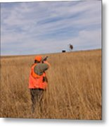 A Hunter Shoots A Ring Necked Pheasant Metal Print
