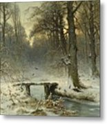 A January Evening In The Woods Metal Print
