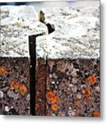 A Joint Metal Print