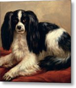 A King Charles Spaniel Seated On A Red Cushion Metal Print