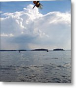 A Leap To Freedom Metal Print