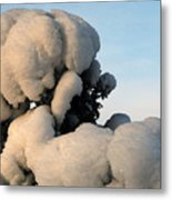A Lick Of Snow On The Bush Metal Print