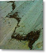 A  Line  In  The  Sand Metal Print